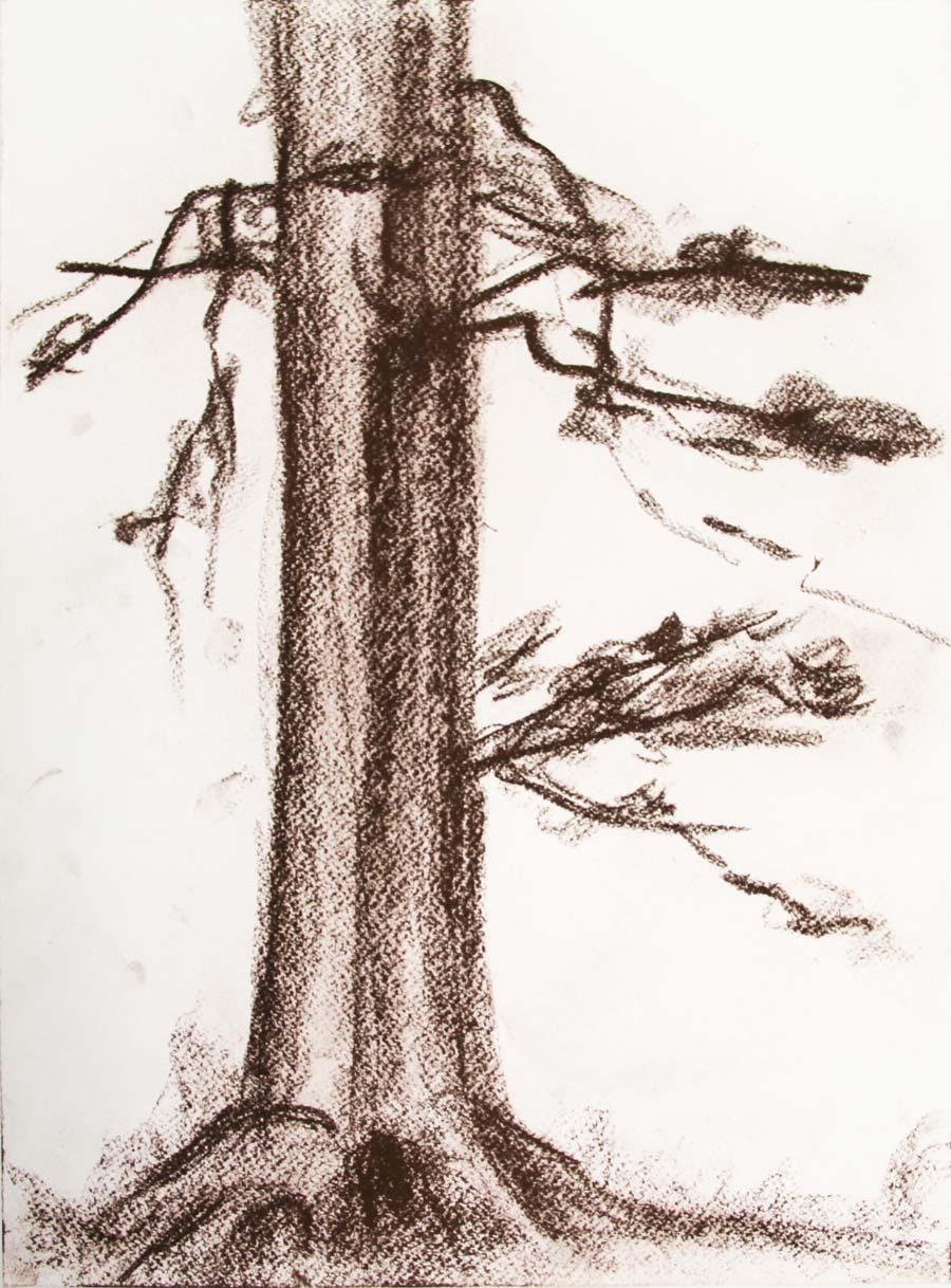 """Sparbach, 15.Nov.87"", 1987, 42x29,5cm, brown chalk on paper"