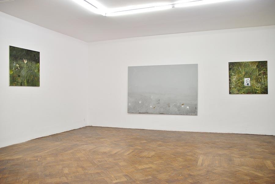 Alexander Ruthner, Installationsansicht