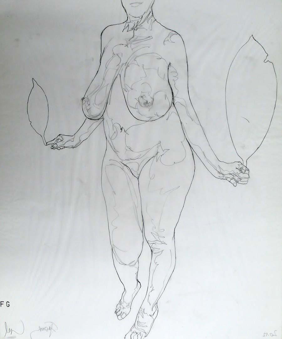 Franz Graf, WOMAN 6, 60 x 50 cm, Bleistift auf Transparentpapier, 2012, signiert
